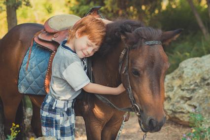 Reiten auf privatem Reiter- und Bauernhof