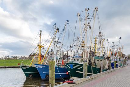Hochseefischen in der Nordsee Ostfriesland